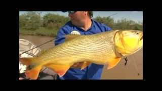 Pesca Argentina Goya