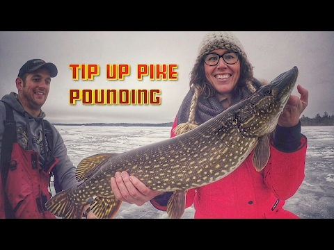 Tip Up Ice Fishing Tricks For Pike - LOTS OF FISH CATCHES