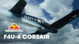 The Extremely Rare Chance Vought F4U-4 Corsair | The Flying Bulls