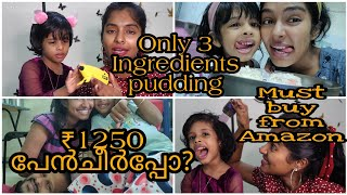 Only 3 ingredients Pudding|Must try|Easy 10min capsicum rice|₹1250 Lice Comb review|Asvi Malayalam