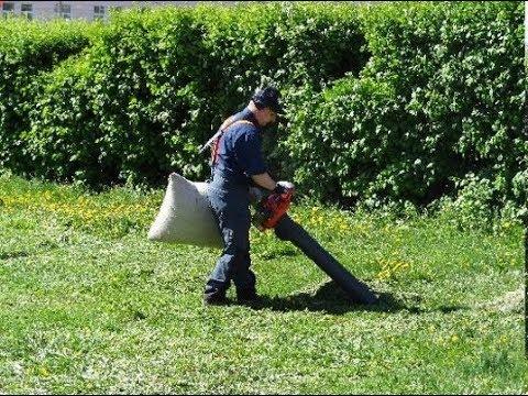 🍁 Готовь сани летом: подбираем качественный пылесос для листьев