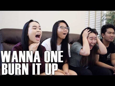 Wanna One (워너원)- Burn It Up (Reaction Video)
