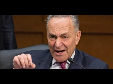 WHAT FEDERAL JUDGE JUST TOOK AWAY FROM SENATE DEMOCRATS LEAVES CHUCK SCHUMER STUNNED AND SPEECHLESS!