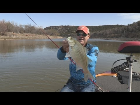 Southwest Outdoors Report #1 Brazos River White Bass Spawn - 2013