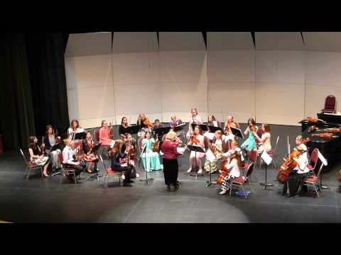 Themes from Harry Potter by John Williams - Suzuki String Orchestra