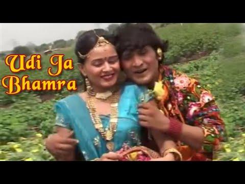 Romantic Gujarati Lokgeet  Udi Ja Bhamra    Halo Sayba Ni Desh Ma   Album