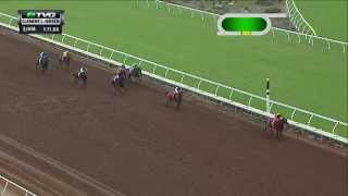 RACE REPLAY: 2015 Clement L. Hirsch Stakes