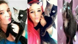 Double Face Cat Compilation - Most Beautiful Cats In The World #6