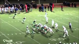 Kyle Marcinick 2013 Football Highlights