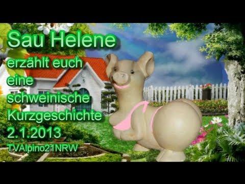 Schweinische Videos