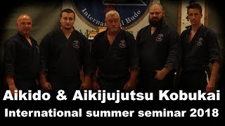 Demonstration 58: Aikido & Aikijujutsu Kobukai International summer seminar 2018