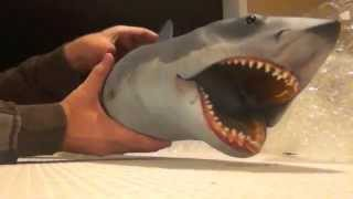 "Part 2 - Shark City Ozark™NTT 37"" SHARK Review - The Assembly"