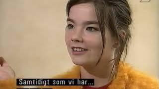 Björk PM-Ansikte mot ansikte 1 dec 1993
