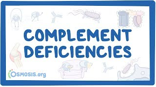 Complement deficiency