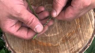 Как сделать веревку из растений. Уроки выживания.(, 2013-08-26T11:56:02.000Z)