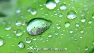 Da Awdas Tariqa by Sheikh Ameen Ullah (Pashto Bayan)