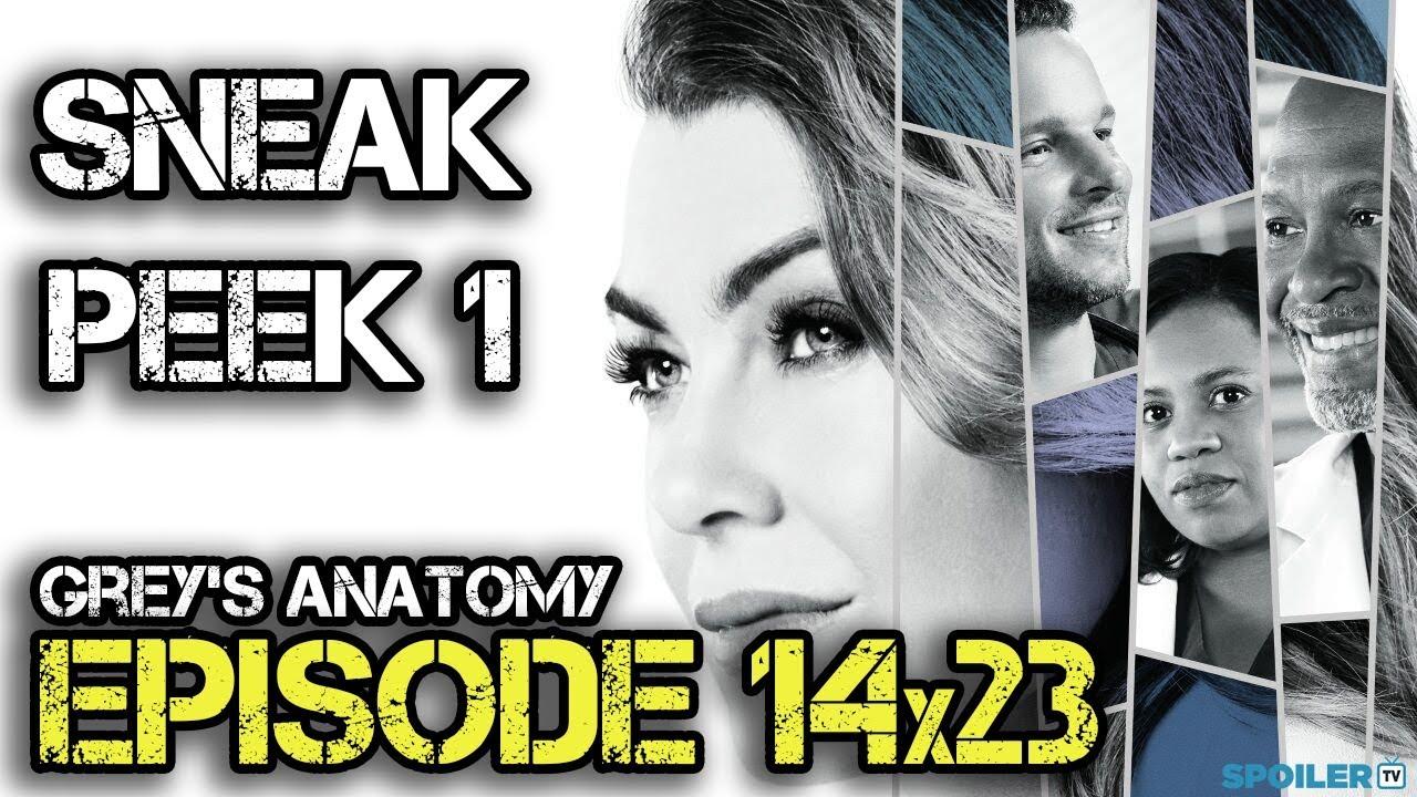 Grey\'s Anatomy 14x23 Sneak Peek \