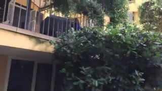 Аренда виллы в Италии | Снять виллу на побережье Лигурии(, 2014-08-24T19:18:55.000Z)