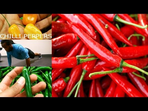 How Chili Peppers Help With Weight loss (Thermogenesis)