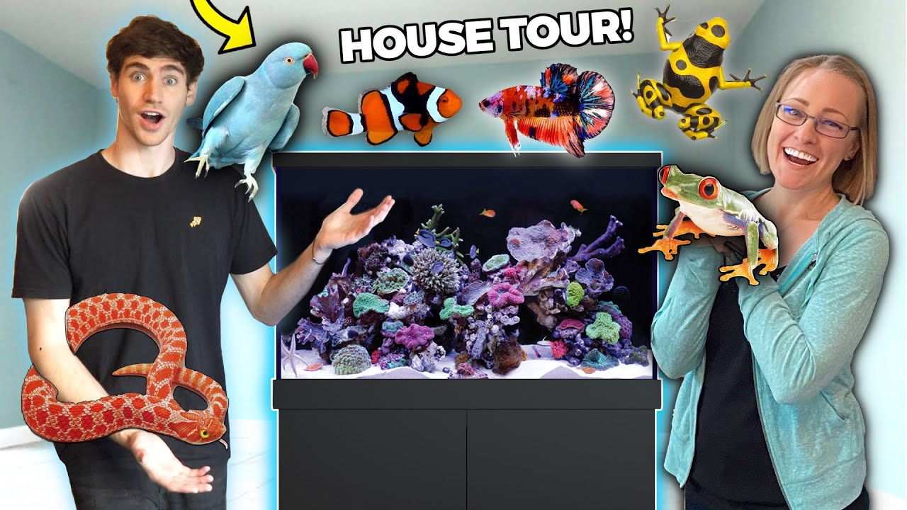 ALL HER EXOTIC PETS + FISH... (HOUSE TOUR!!)