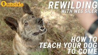 How to Teach Your Dog to Come | Outside