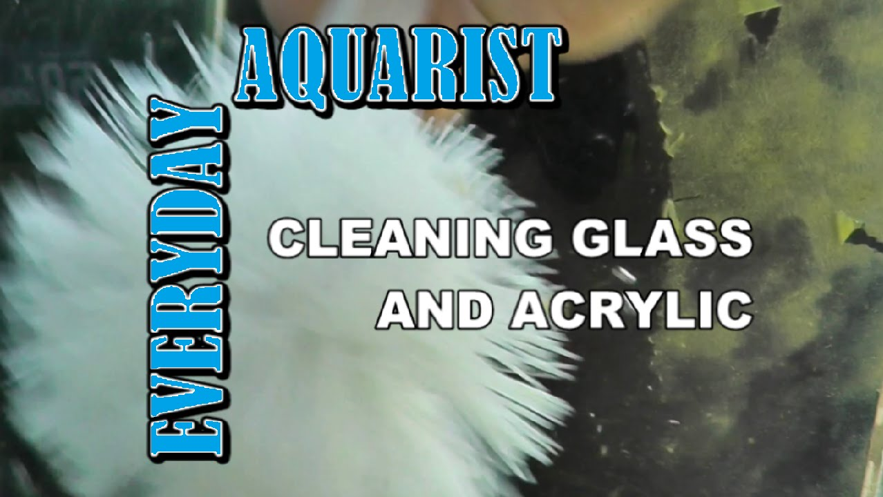 Fish aquarium glass cleaner - Fish Aquarium Glass Cleaner