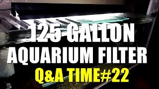 125 Gallon Aquarium Filter??? | Q&a Time #22