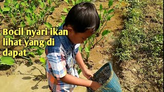 Boy Looking for fish in the trench for arowana fish bait