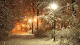 Зима. Парк. Вечер. Снег - Футажи. Футажи для видеомонтажа бесплатно в Full HD(1080p) качестве