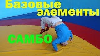 Тренировка самбо  Промокашка, маятник, забегания и кувырок через живот   базовые элементы разминки.