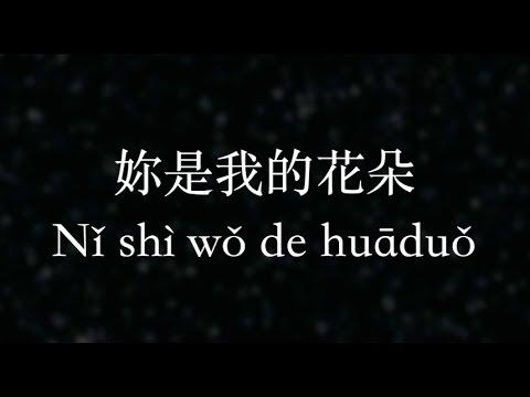 伍佰/Wu Bai【妳是我的花朵】You are my flower (KTV with Pinyin + Quick Check)