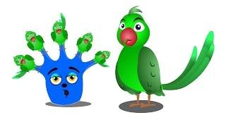 Parrot Finger Family | Finger Family | Finger Family Rhymes | Animal Finger Family Rhymes
