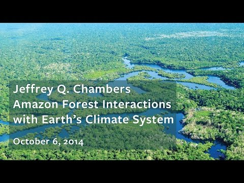 Amazon Forest Interactions with Earth's Climate System