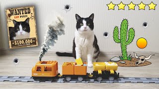 Wild West. Wanted Сat Steals Food From Moving Freight Train