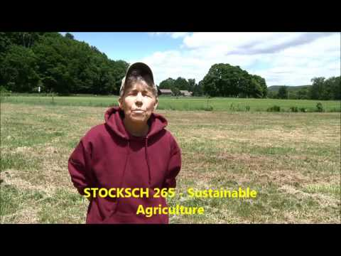 Nancy has taken online classes in Sustainable Food and Farming