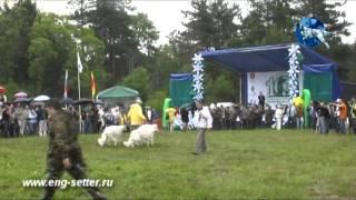 10-ая юбилейная Всероссийская выставка охотничьих собак. Открытие.