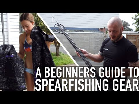 A Beginners Guide To Spearfishing Gear - SNEAK PEAK / TRAILER