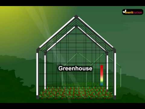 What is Green house effect and how is it associated with Global Warming