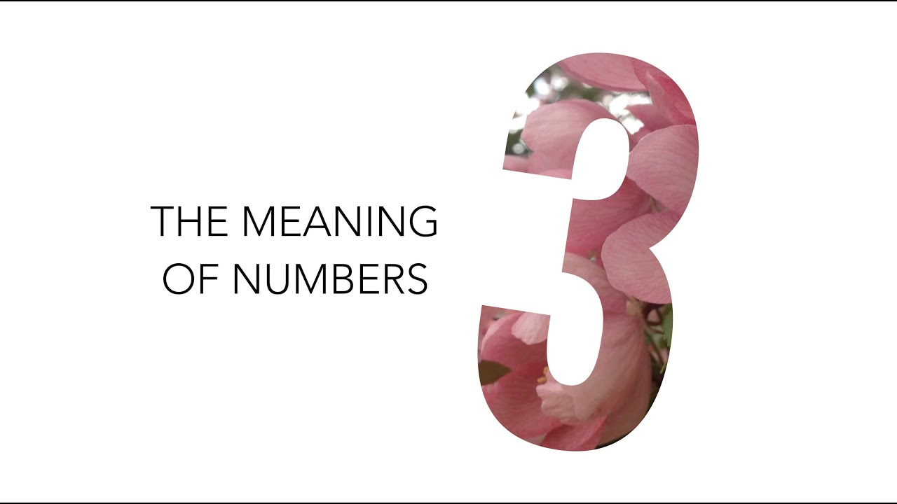 The Meaning of Numbers: 3 / Numerology | Andrea's Number