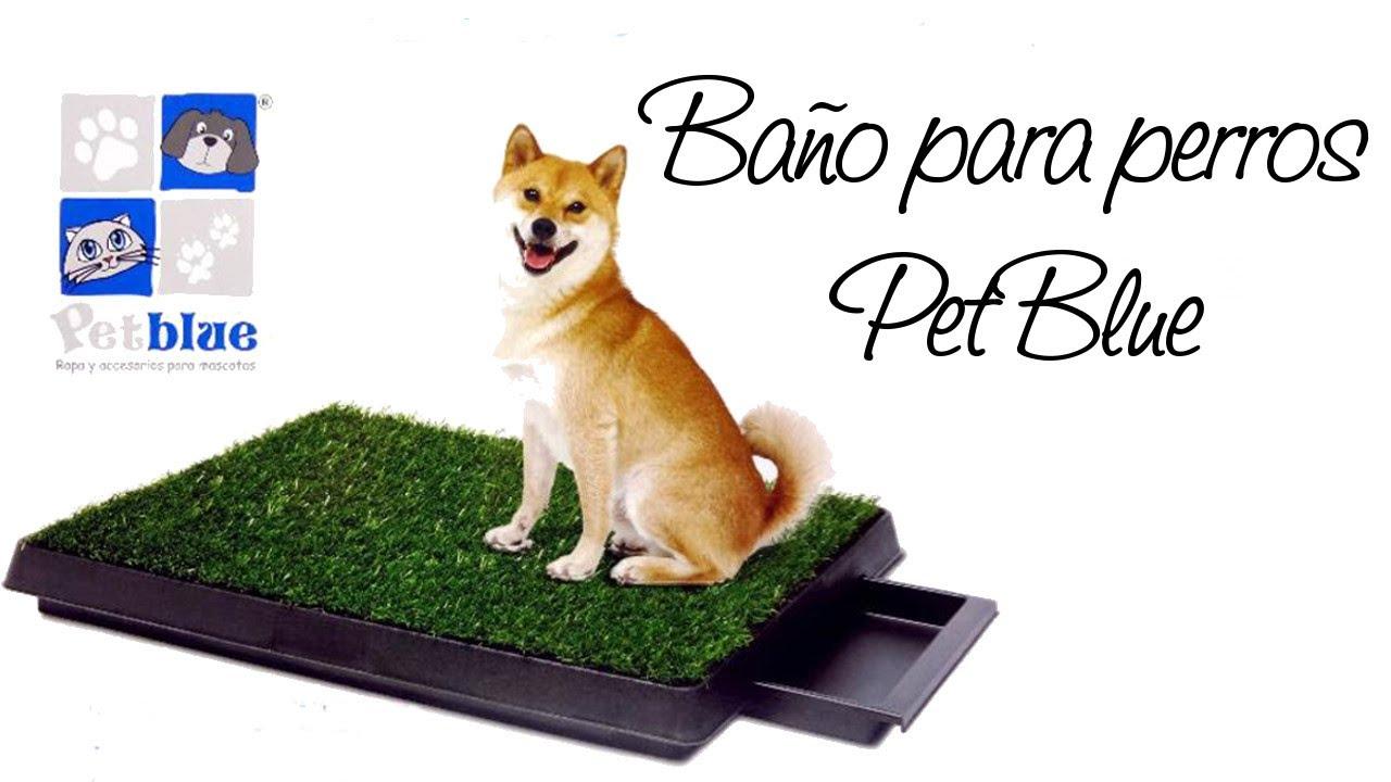 Bano Para Perros Quito