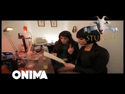 Stupcat - Seriali Amkademiku (Episodi 11)
