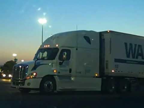 Walmart Cascadia Freightliner pulling a WalMart&Sam's Club 53' Dry Cargo Trailer