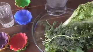Заморозка зелени- укропа и кинзы на зиму Два способа часть1