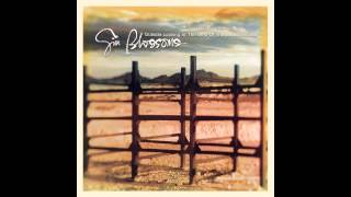 Download Gin Blossoms,