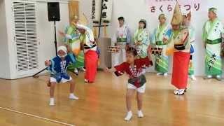大仏連阿波踊り2015兜台桜祭 (後半)