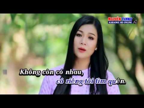 TAM SU DOI TOI    karaoke  Dương Hồng Loan   YouTube