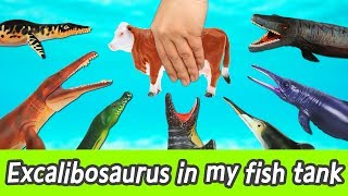 [EN] Let's raise Excalibosaurus in my fish tank! learn animals name, Collecta figureㅣCoCosToy