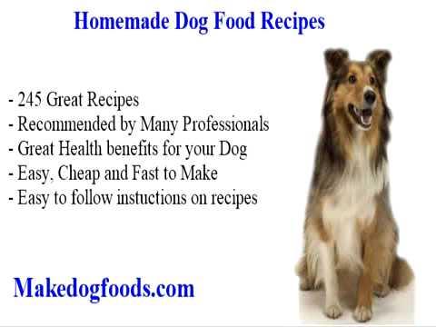 Vegetarian dog food recipe youtube vegetarian dog food recipe forumfinder Gallery