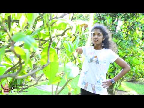 puberty ceremony france tamil outdoor song by thiruppathyvideos.com
