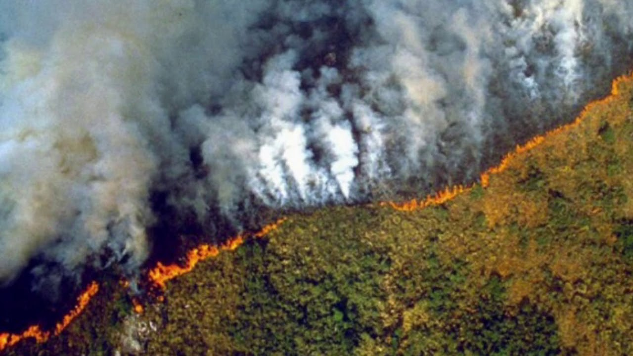 Amazon Rainforest Fires Block out Sun